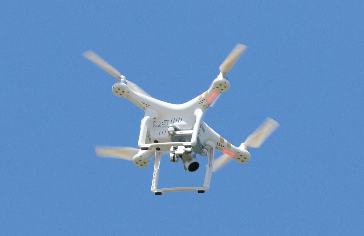 Name:  osprey-short-life-4_I0A1225.jpg Views: 84 Size:  261.0 KB