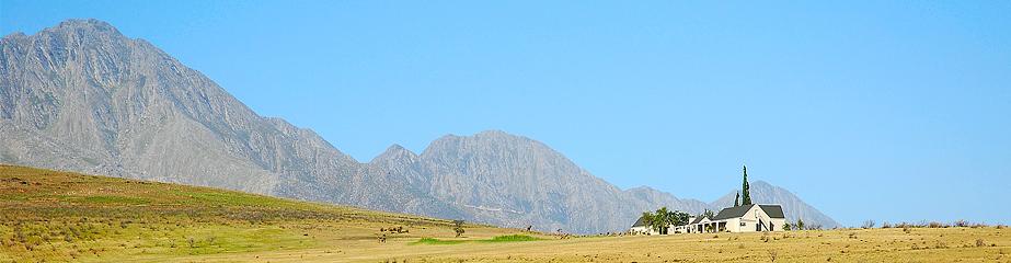 Name:  witfontein2.jpg Views: 80 Size:  223.0 KB