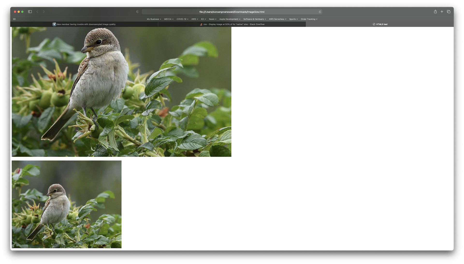 Name:  Retina Images.jpg Views: 28 Size:  269.3 KB